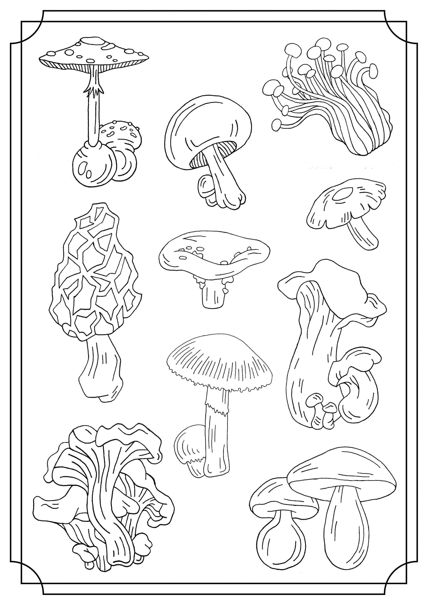 Incredible Mushrooms coloring page to print and color for free