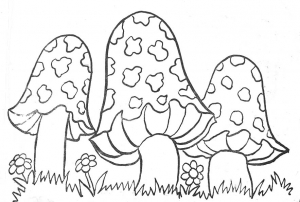 Coloring page mushrooms to color for kids
