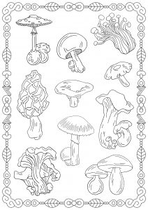 Coloring page mushrooms to print