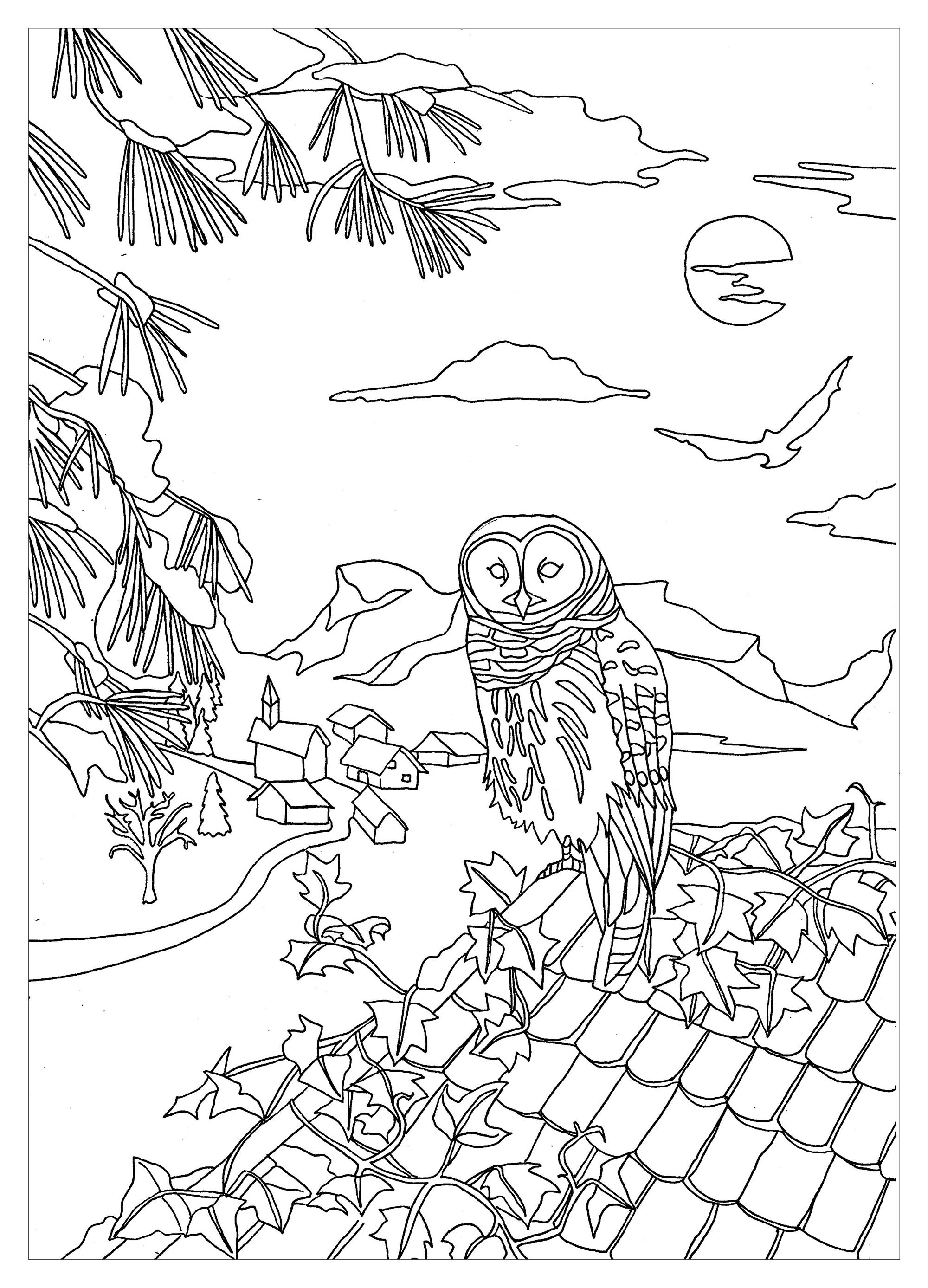 Owls To Print Owls Kids Coloring Pages