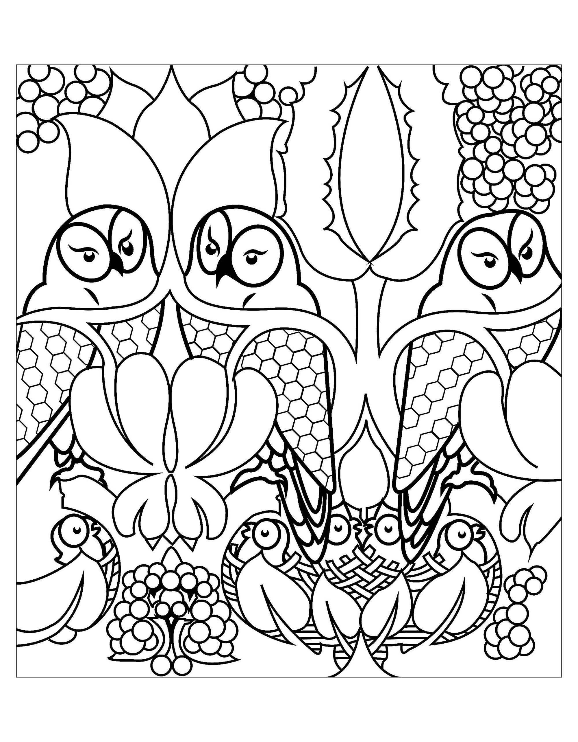 Owls free to color for kids - Owls - Free printable Coloring pages ...