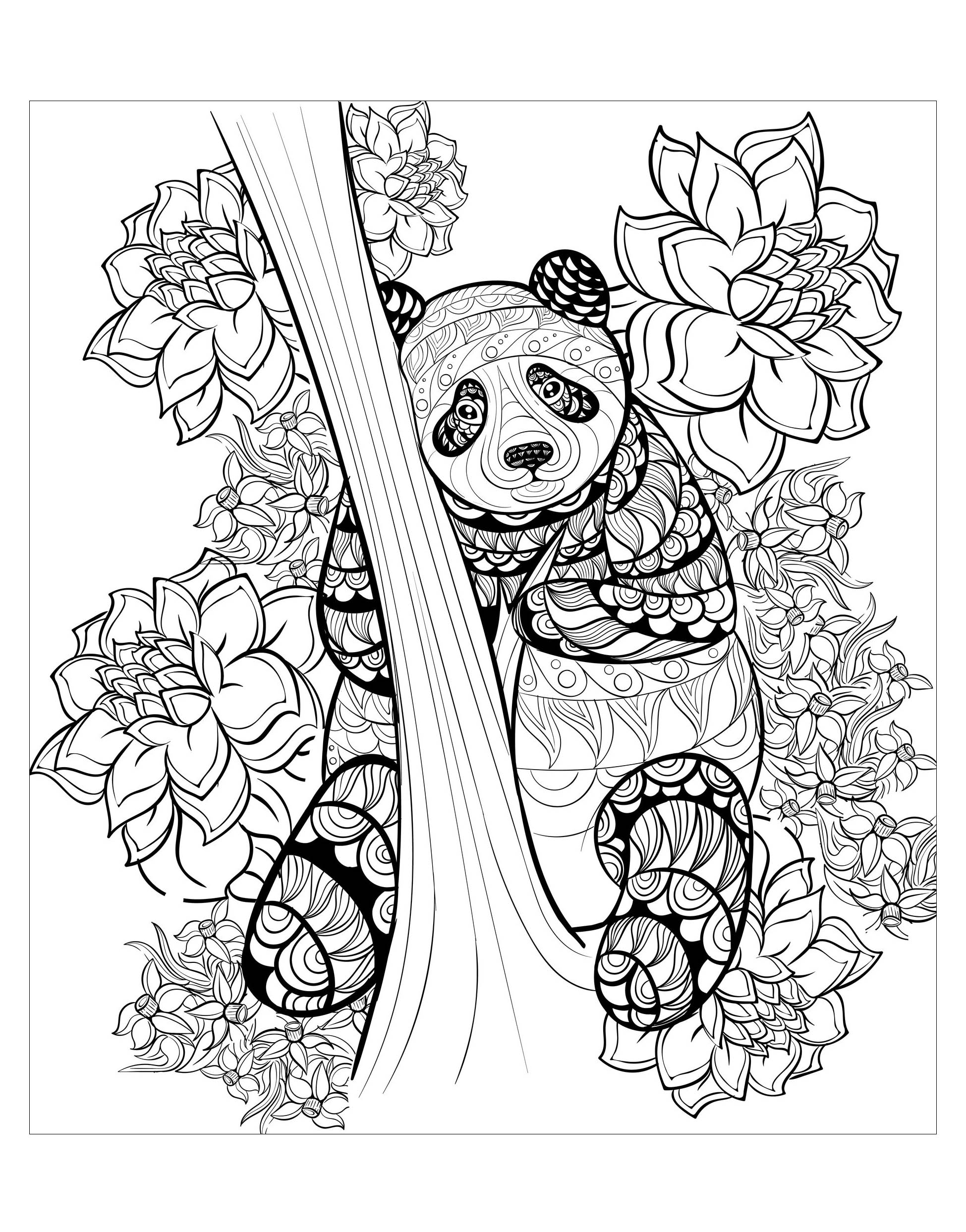 Incredible Pandas coloring page to print and color for free