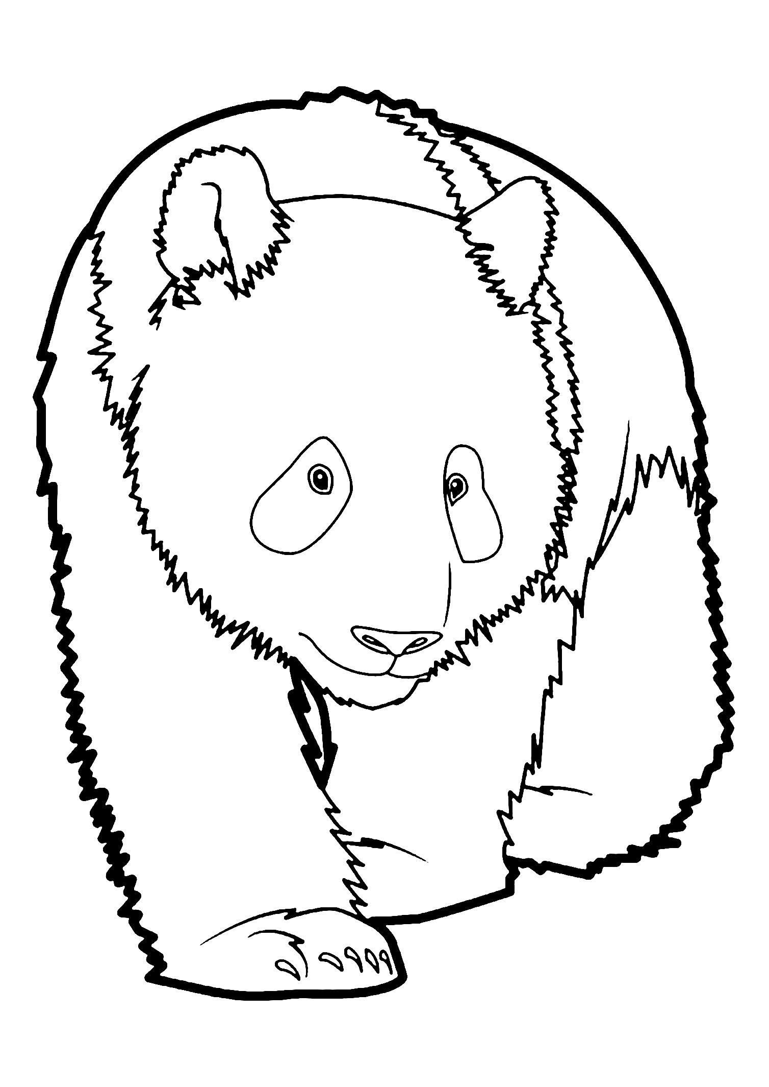 Pandas to print for free - Pandas Kids Coloring Pages