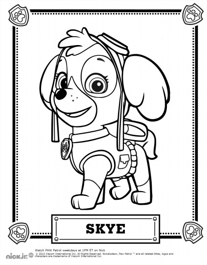 picture regarding Free Printable Paw Patrol Coloring Pages named Paw patrol in direction of obtain for cost-free - Paw Patrol Youngsters Coloring Internet pages