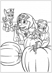 Coloring page paw patrol to color for kids