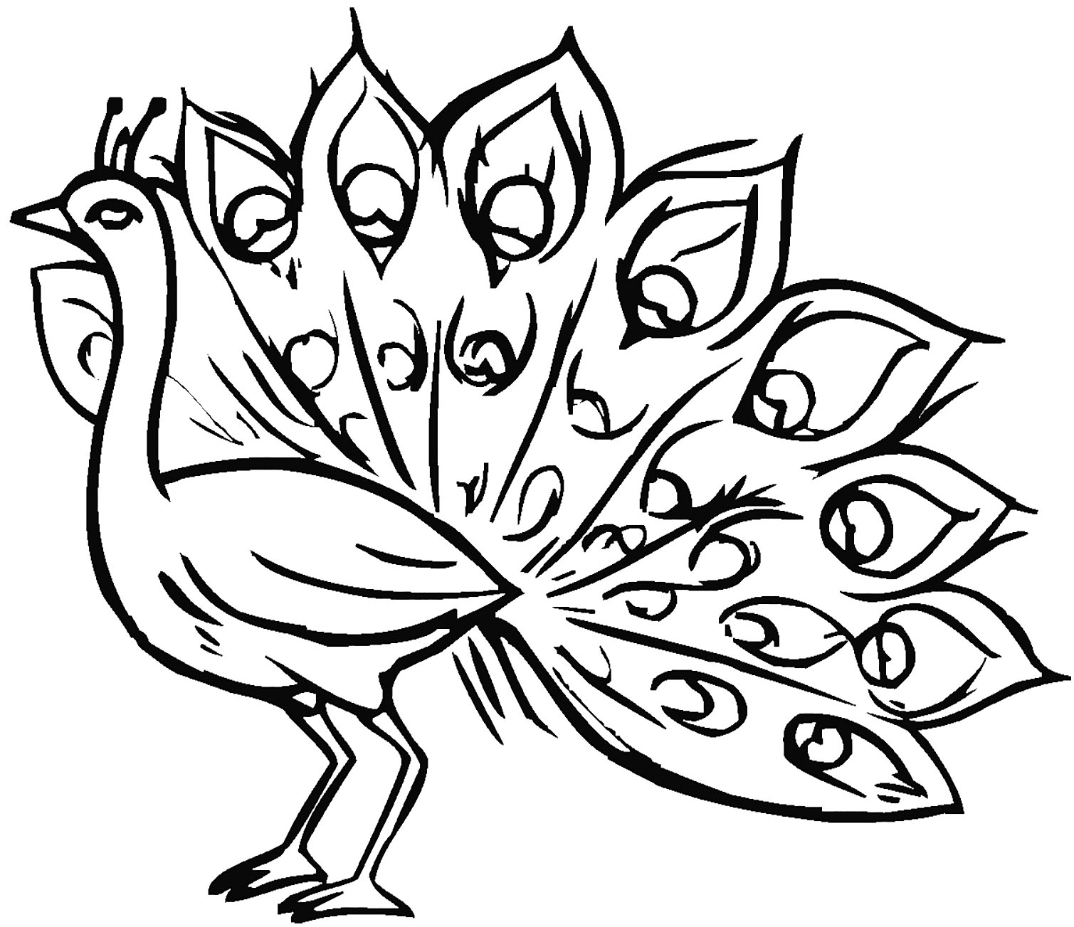 Peacocks coloring page with few details for kids