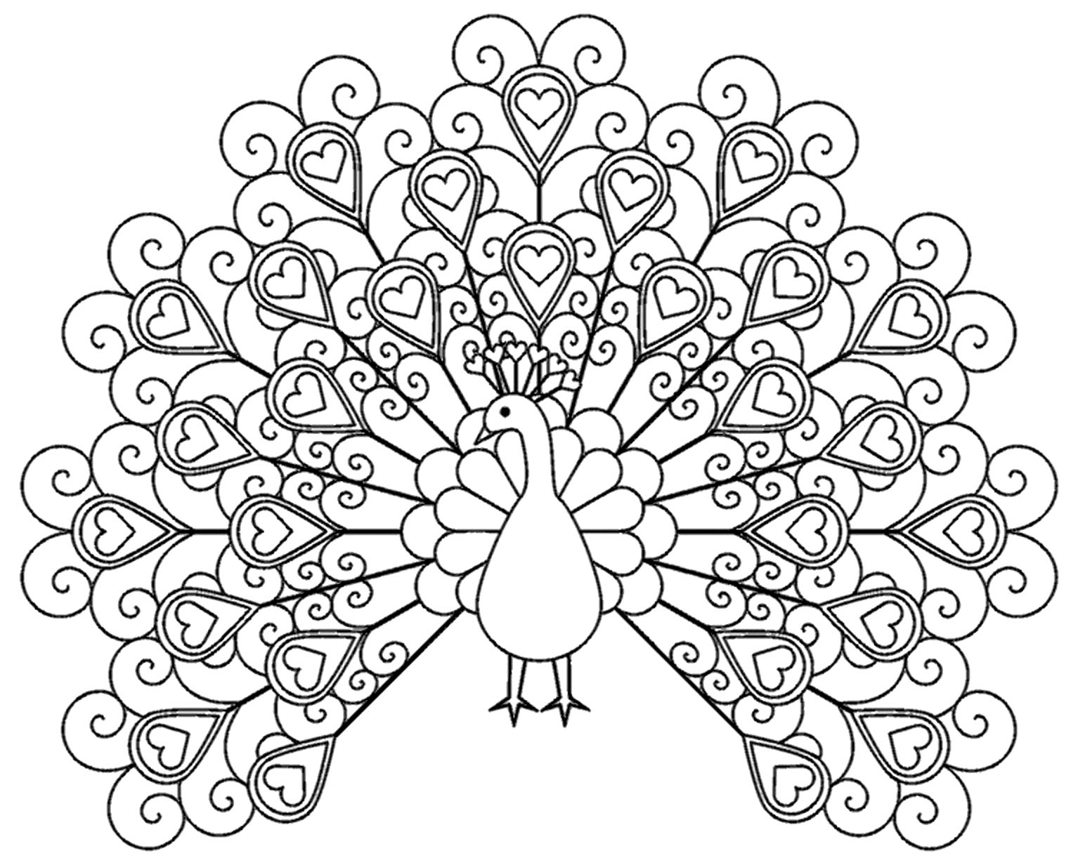 Peacocks to color for children - Peacocks Kids Coloring Pages