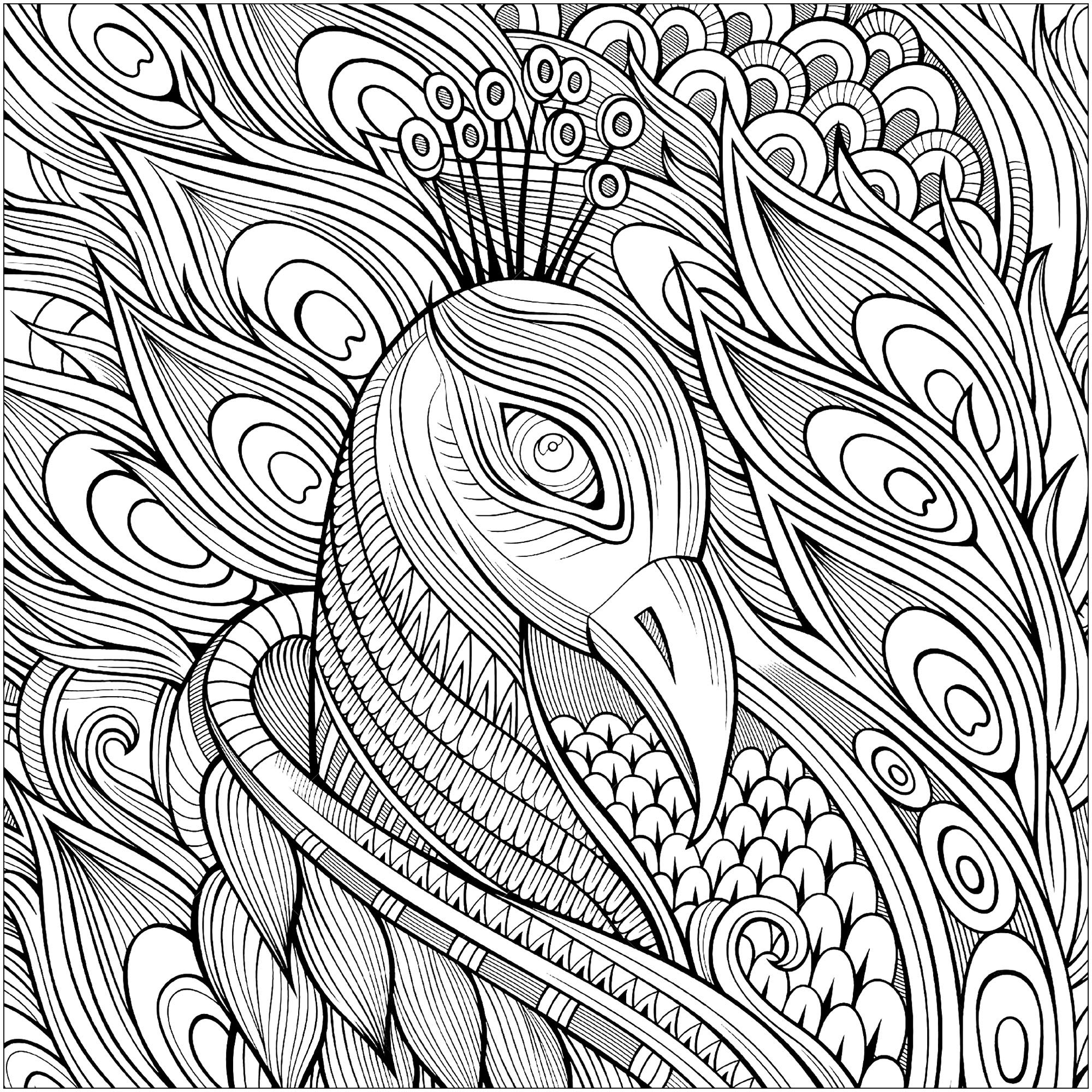 net coloring pages for kids - photo#28