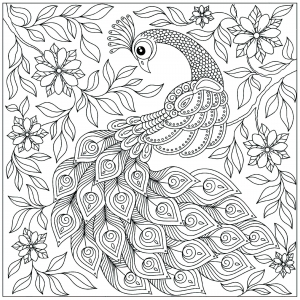 Coloring page peacocks to print