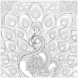 Coloring page peacocks free to color for children