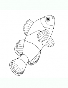 Coloring page pisces free to color for children