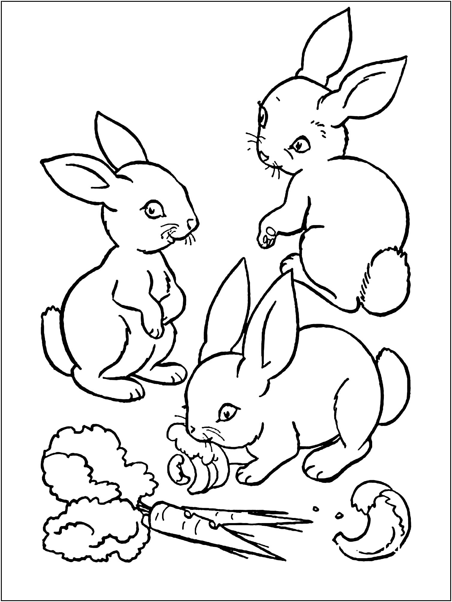Funny Rabbit coloring page for kids