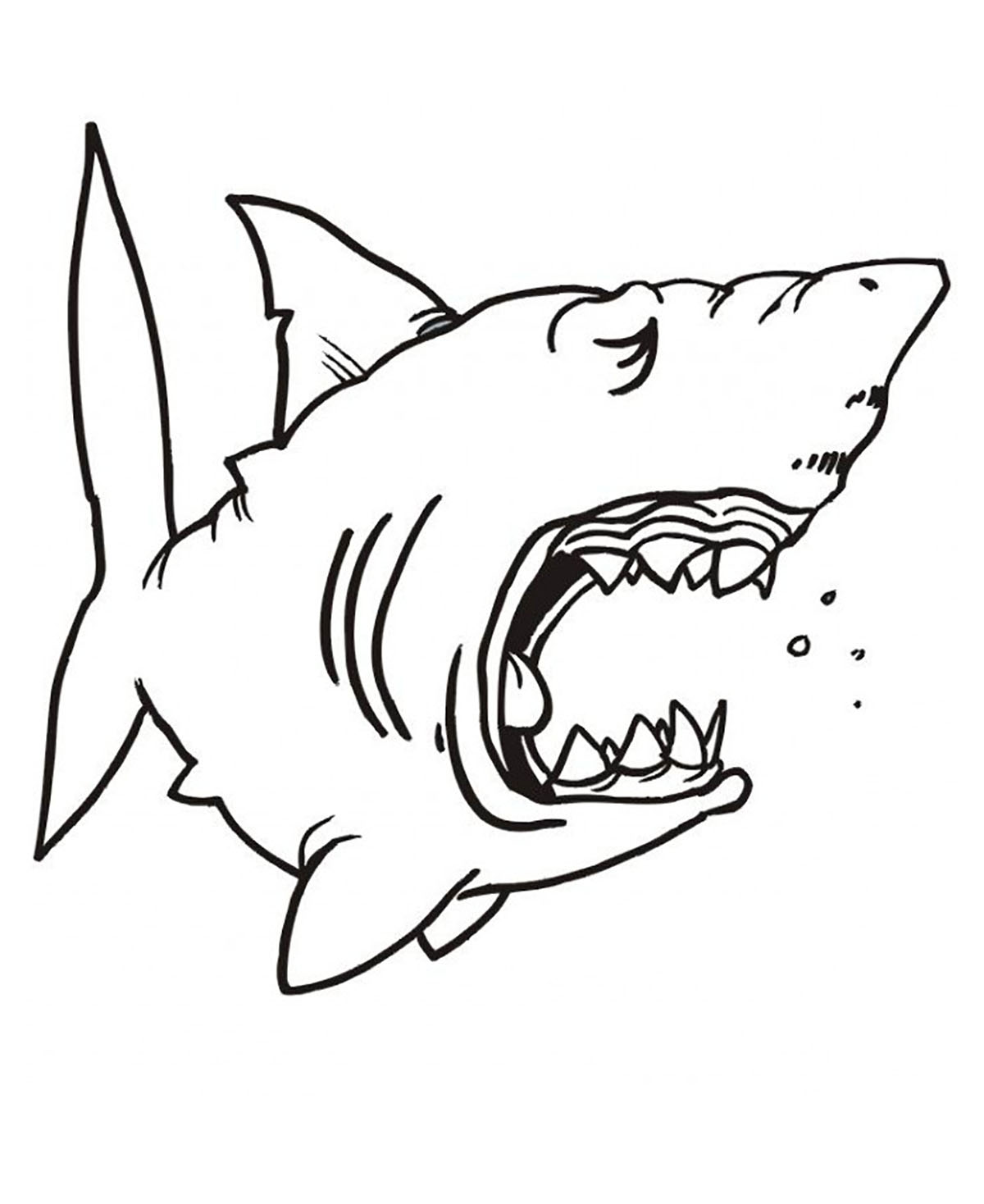Sharks for children - Sharks Kids Coloring Pages