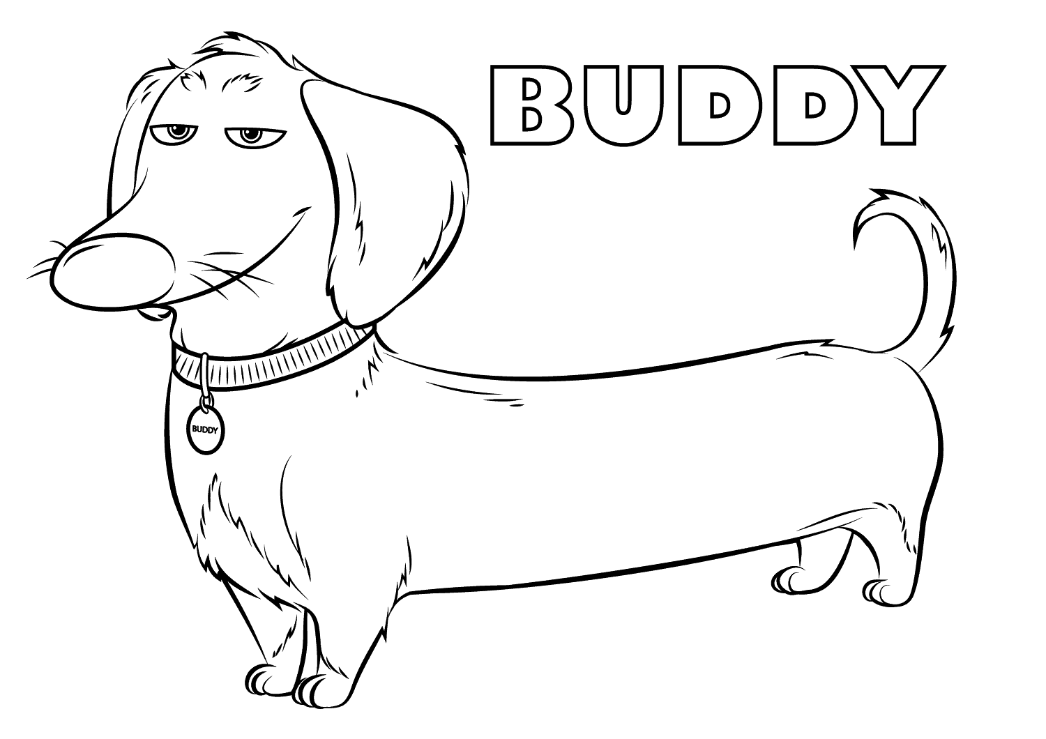 Beautiful The Secret Life of Pets coloring page