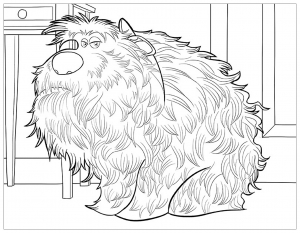 Coloring page the secret life of pets free to color for children