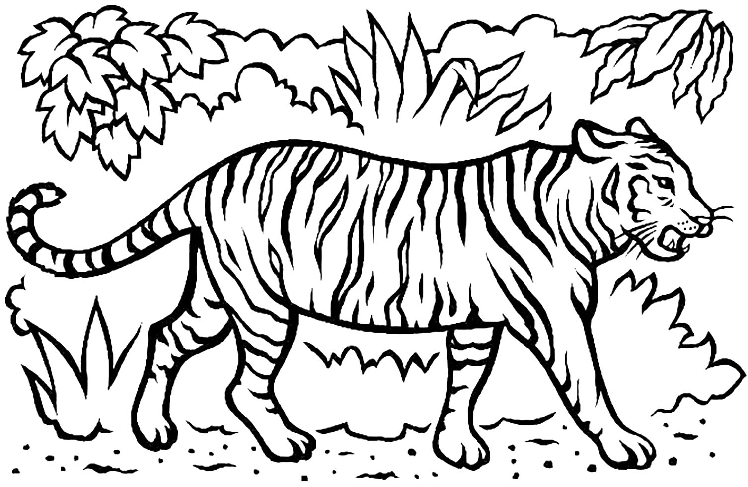 Free Tigers coloring page to download, for children