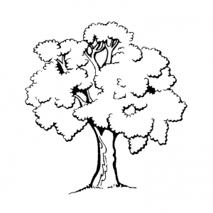 Coloring page trees to print for free