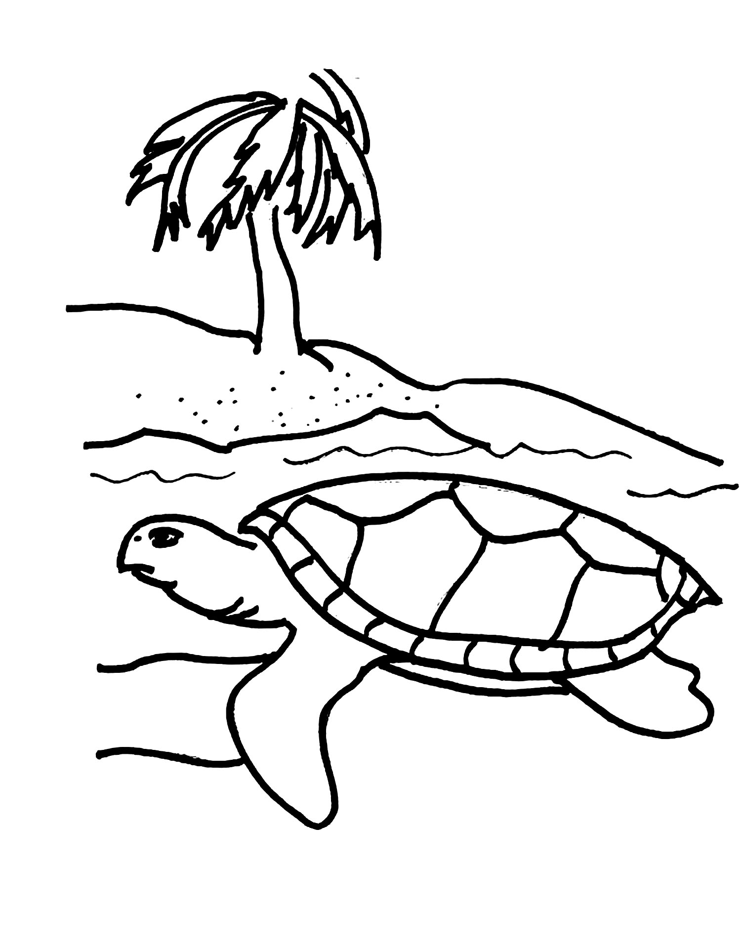 Turtles coloring page to download