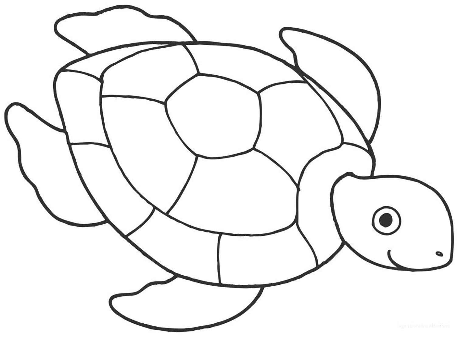 Turtles To Color For Kids Turtles Kids Coloring Pages