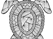 Turtles Coloring Pages for Kids