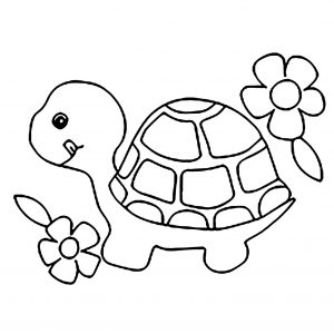Coloring page turtles to download for free