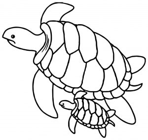Coloring page turtles to print