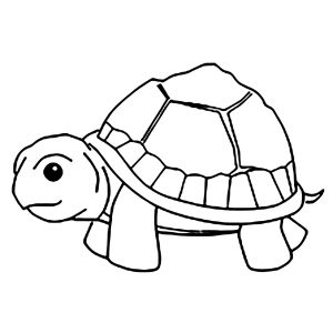 Coloring page turtles to download