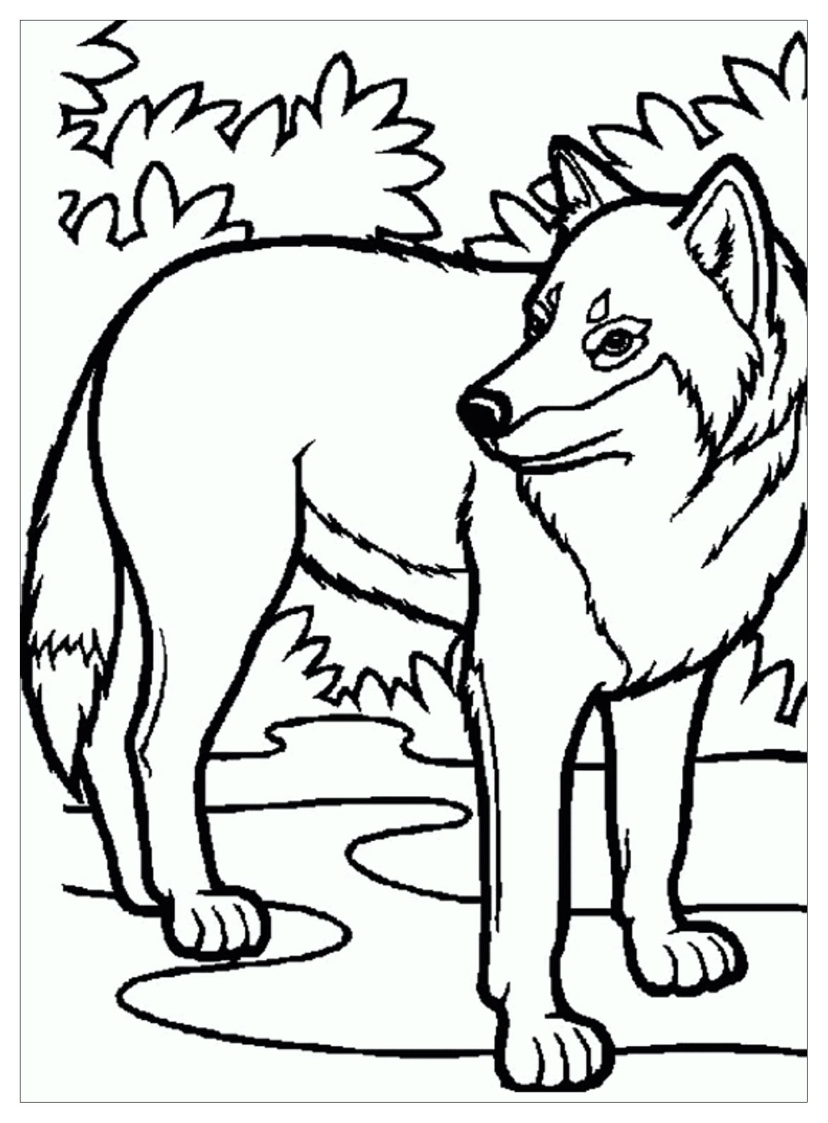 Wolf Free To Color For Children Wolf Kids Coloring Pages