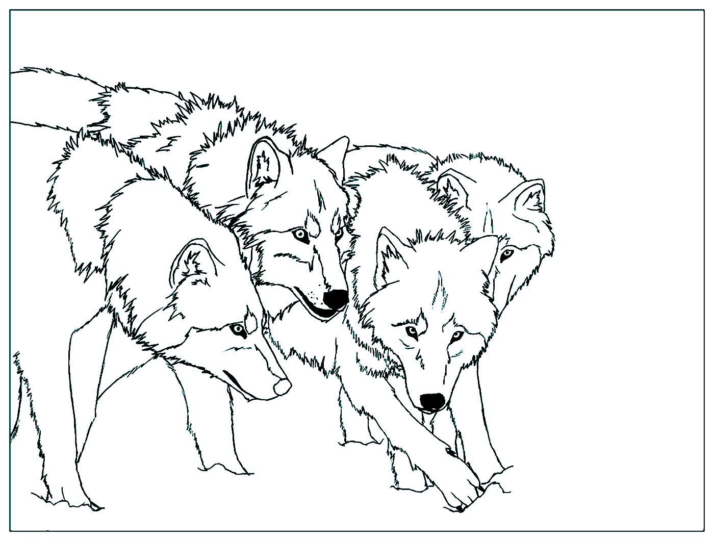 - Wolf To Color For Kids - Wolf Kids Coloring Pages