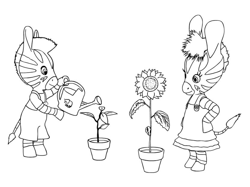 Zou coloring page to print and color for free
