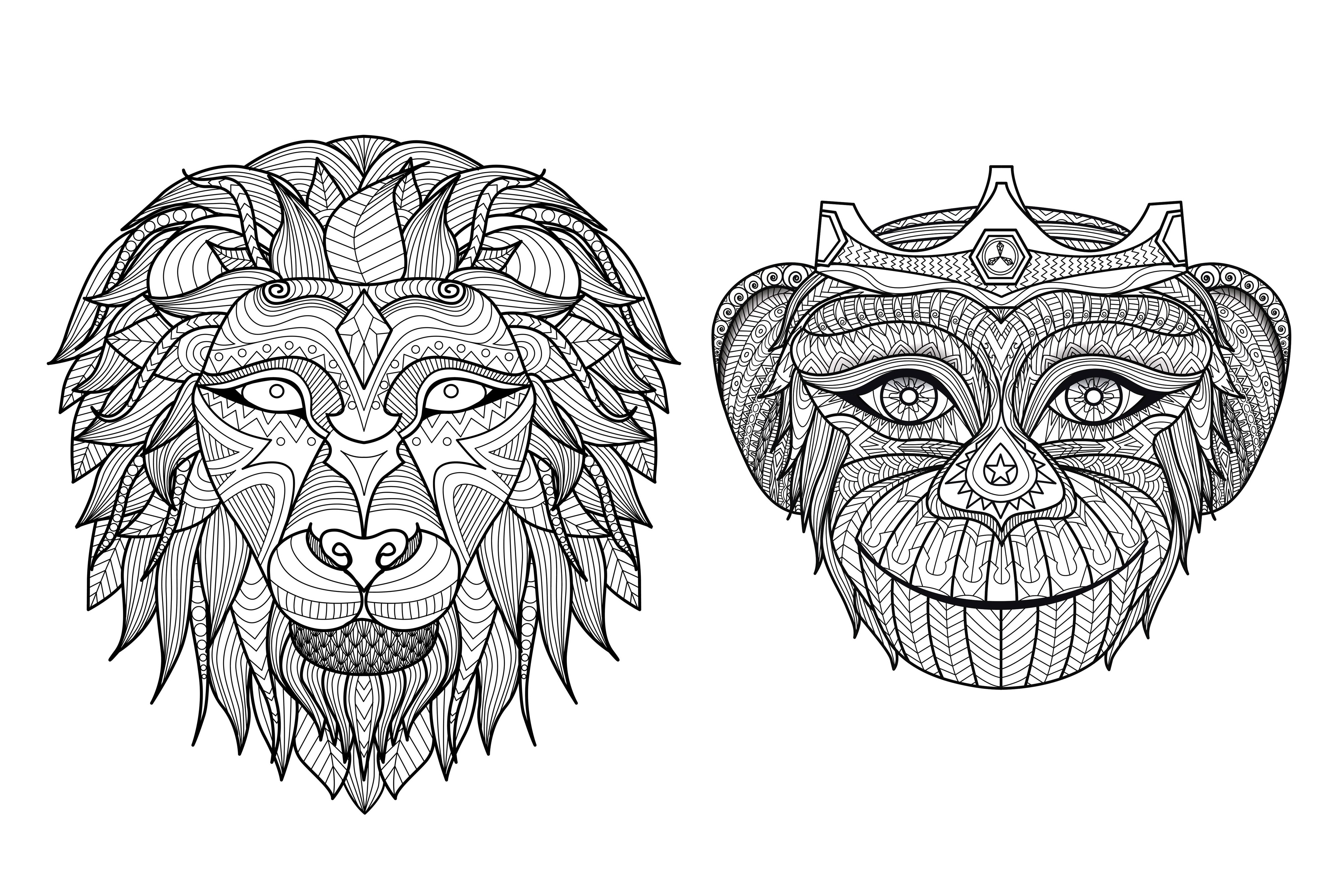 Coloring page of the head of two animals from Africa : A Lion and a Monkey !