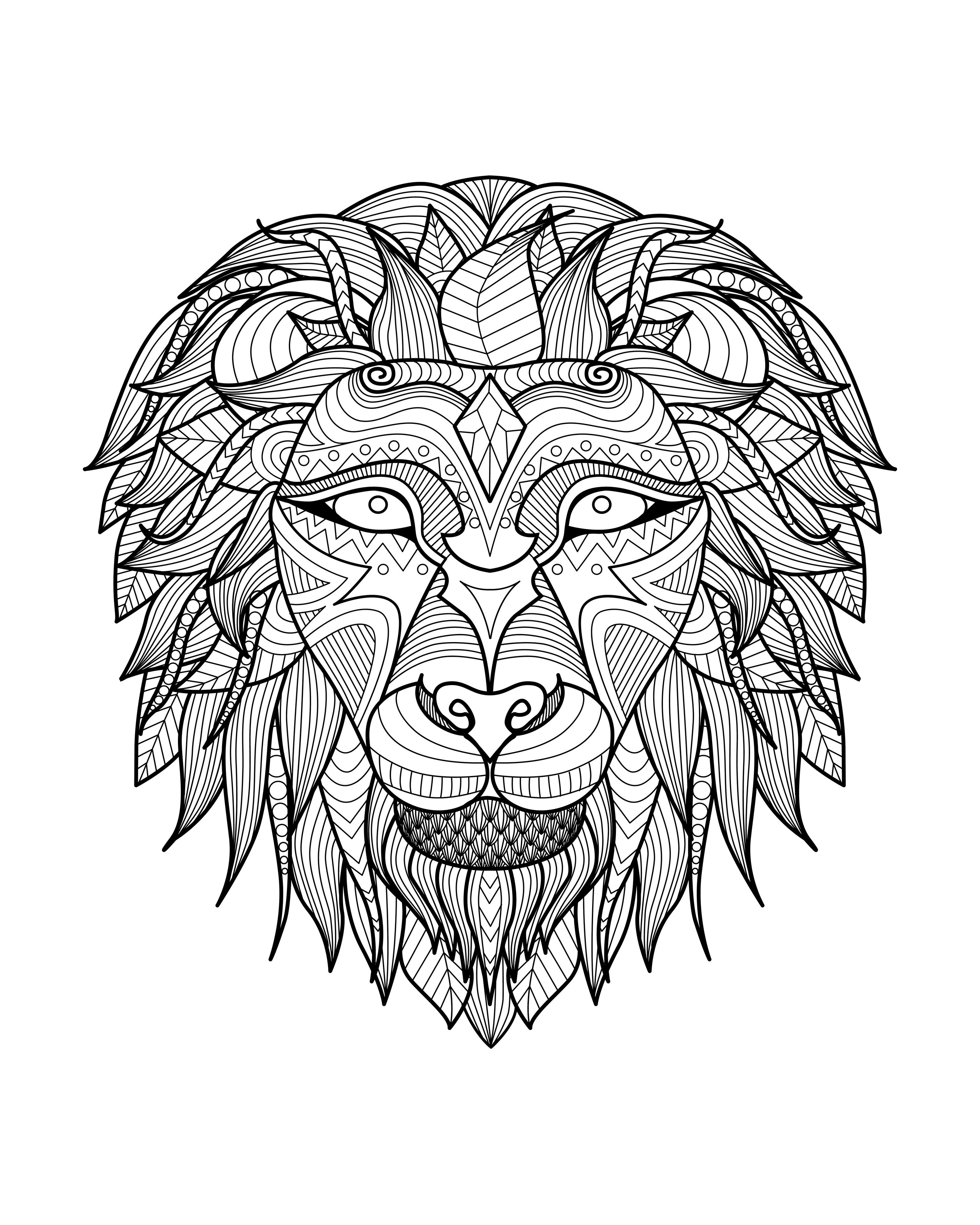 Africa lion head 2 | Africa - Coloring pages for adults | JustColor