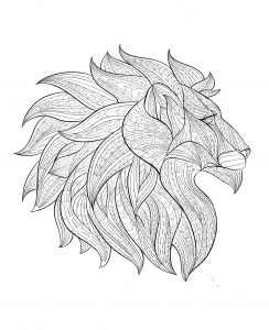 Coloring adult africa lion head profile