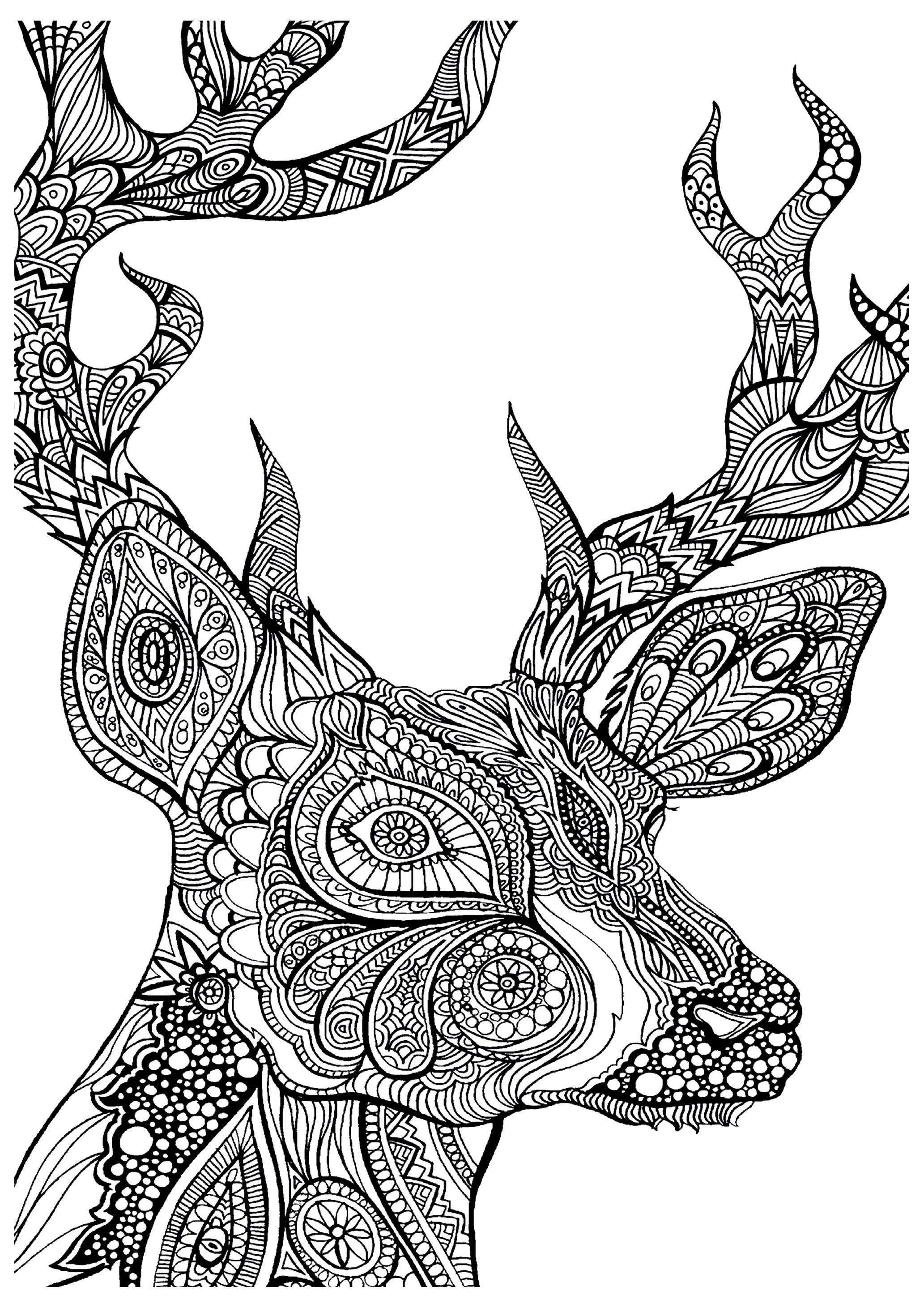 Coloring pages for adults animals - Coloring Deer Head Free To Print
