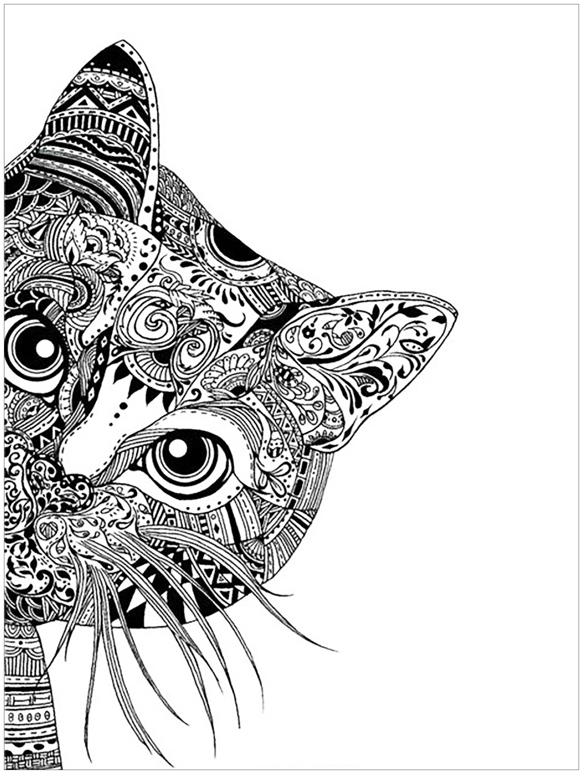 coloring pages adults cat head 1 free to print