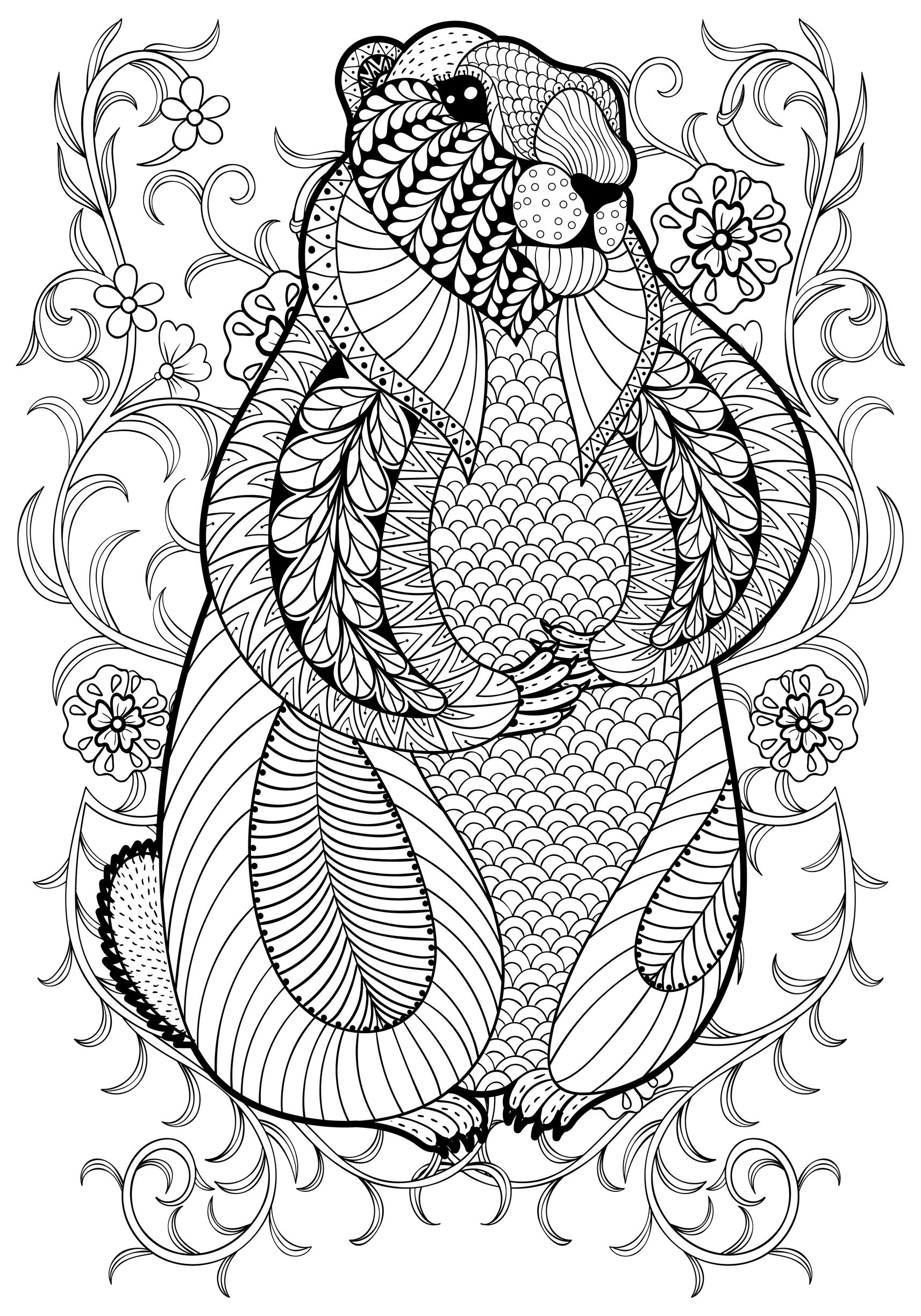 pages marmot by ipanki animals coloring pages for adults justcolor. Black Bedroom Furniture Sets. Home Design Ideas