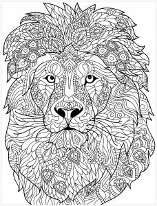 coloring lion complex patterns