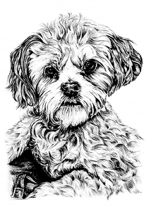 coloring page dog free to print