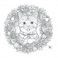 coloring pages adults cat mandala kchung free to print