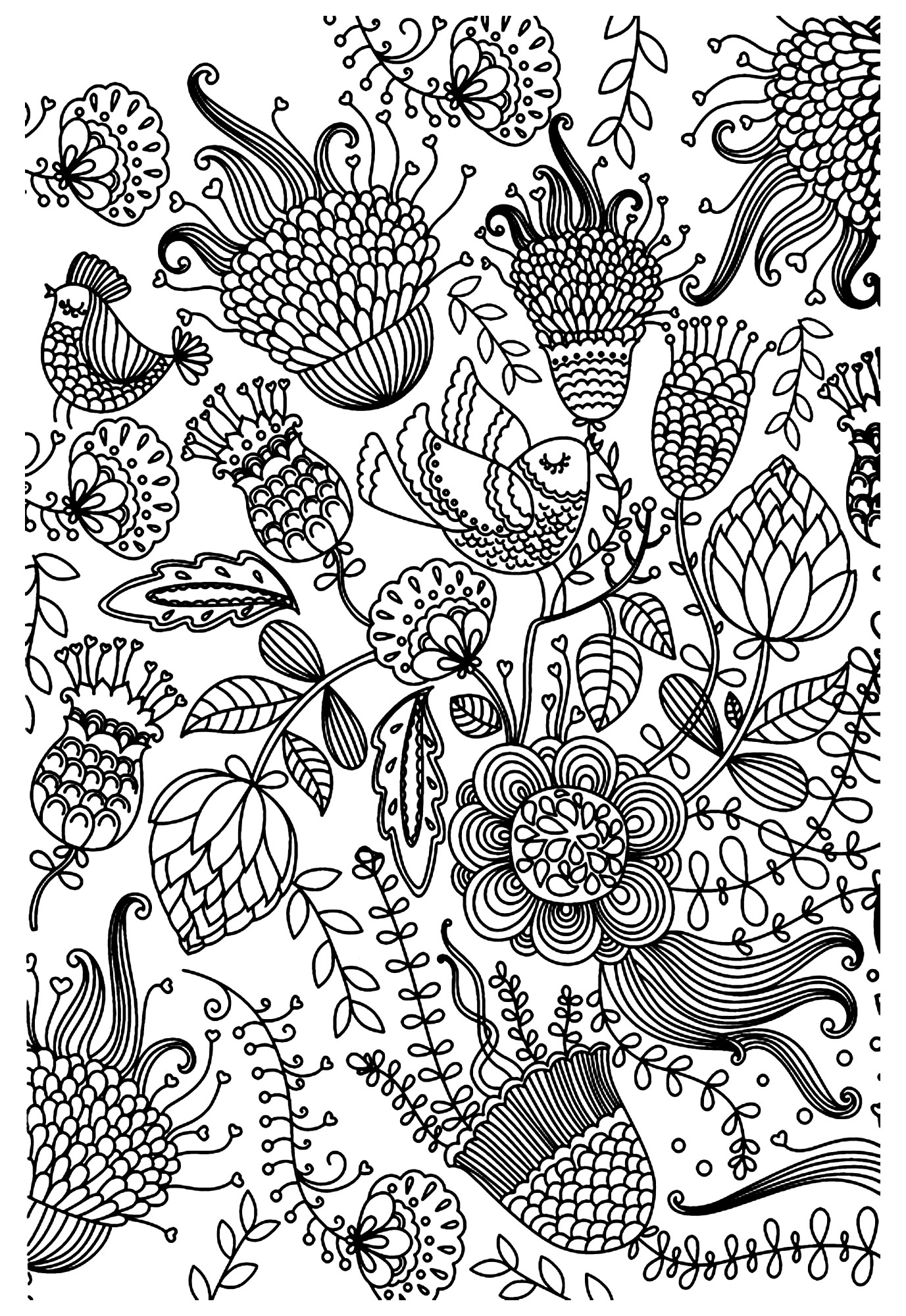 Antistress birds Anti stress Adult Coloring Pages