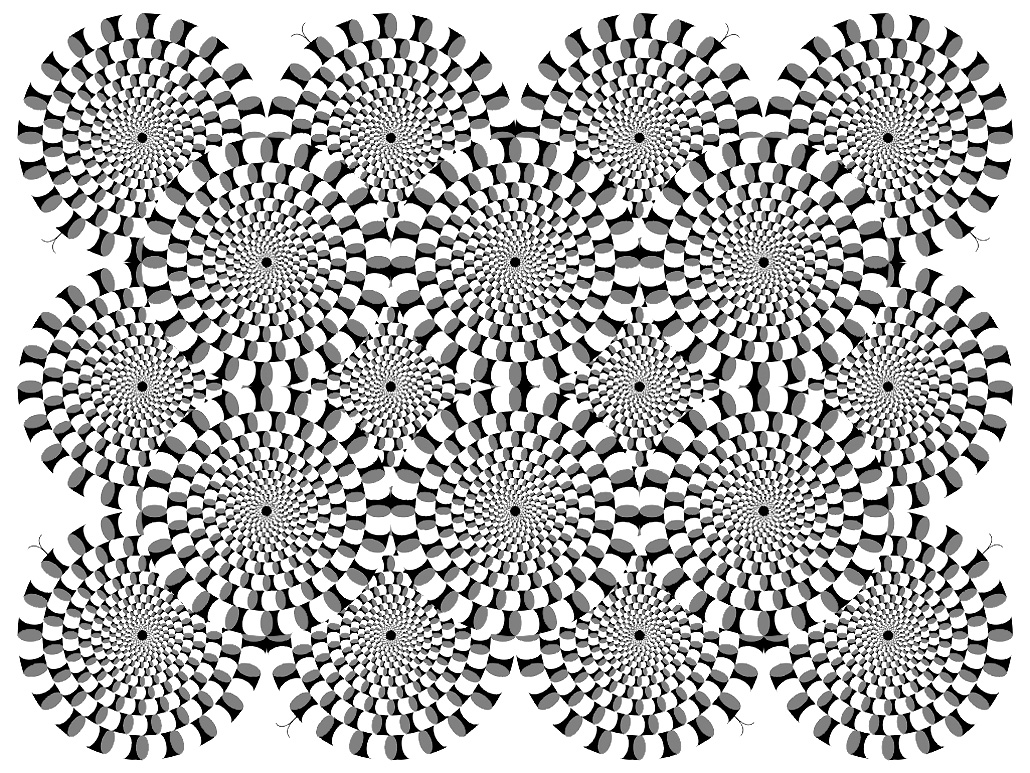 Image Of Multiple Circle Assembled For An Optical Illusion