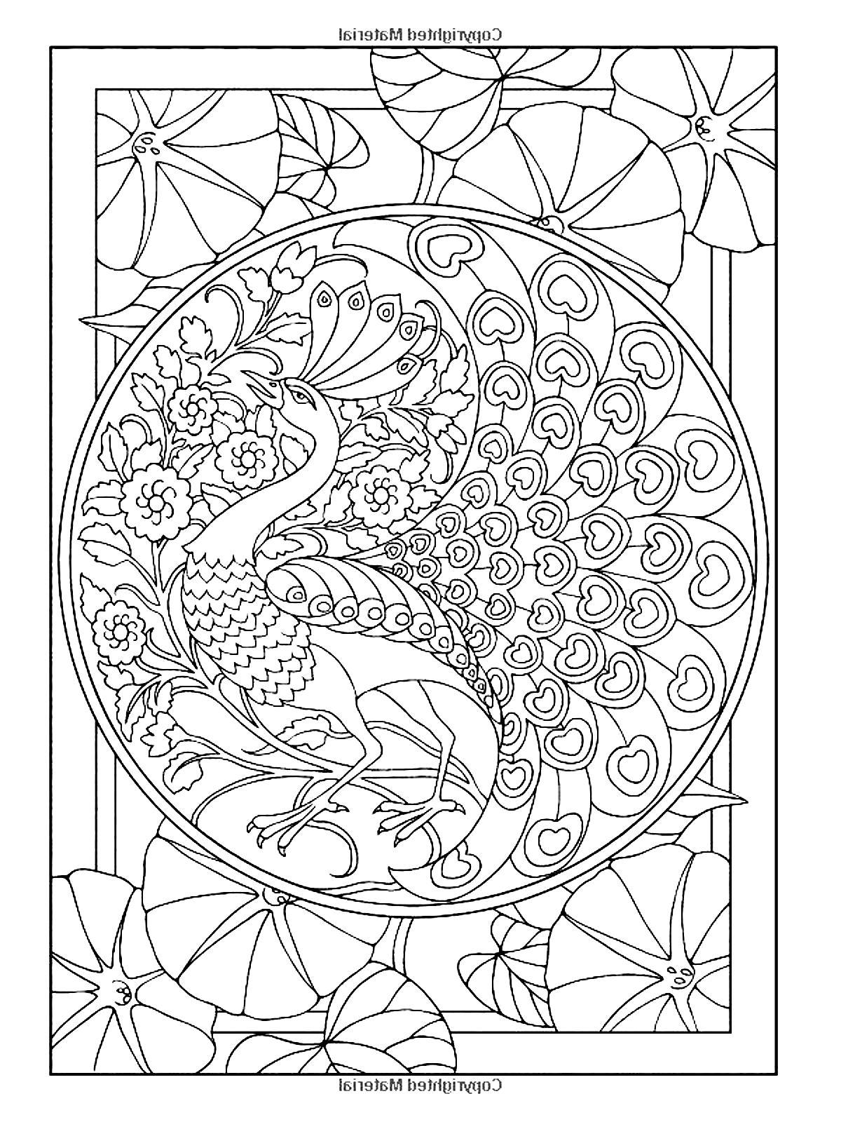 art coloring pages free | Art nouveau style peacock - Art Nouveau Adult Coloring Pages
