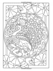 coloring adult art nouveau style peacock