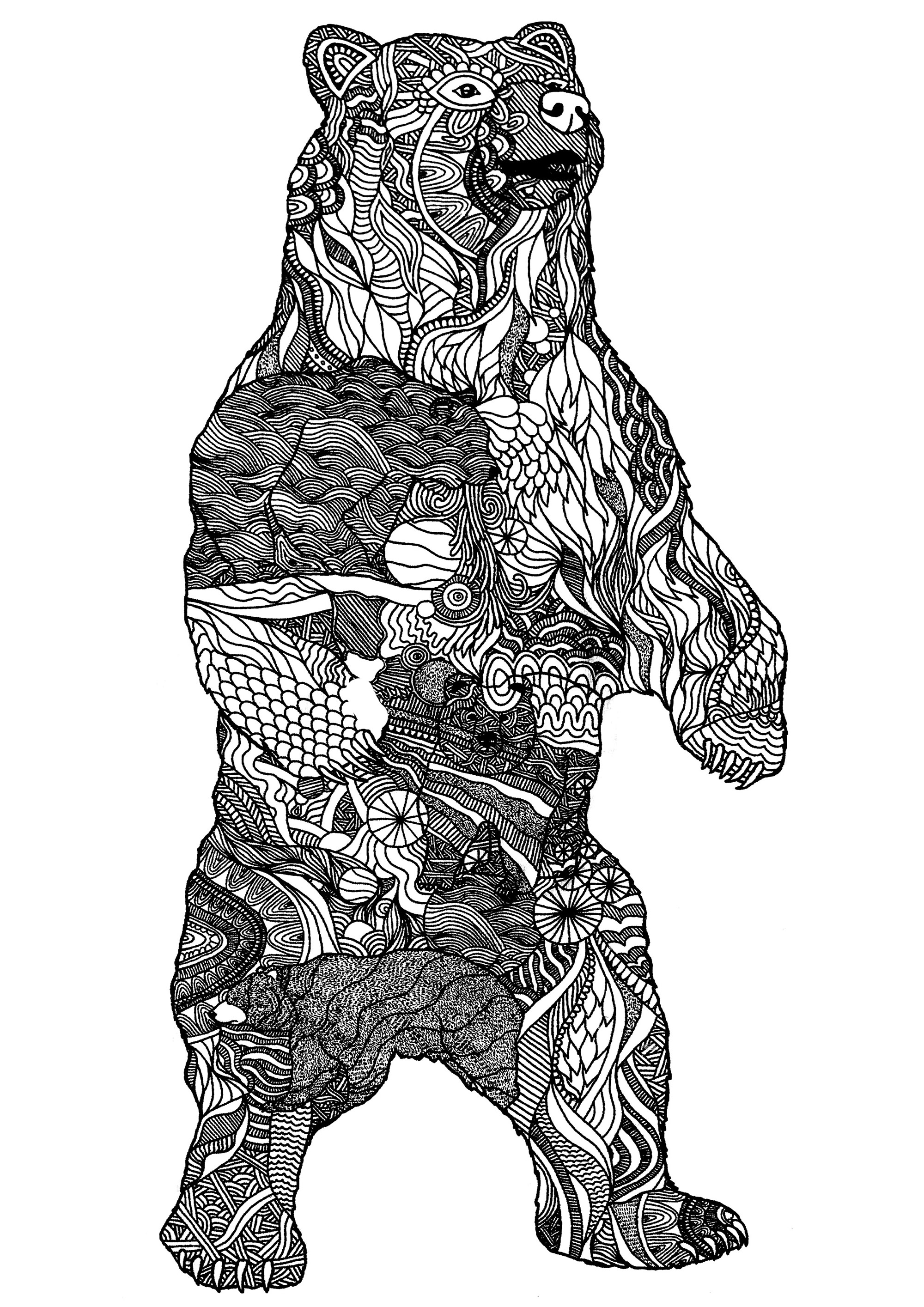 Big Bear Zentangle Patterns Bears Adult Coloring Pages