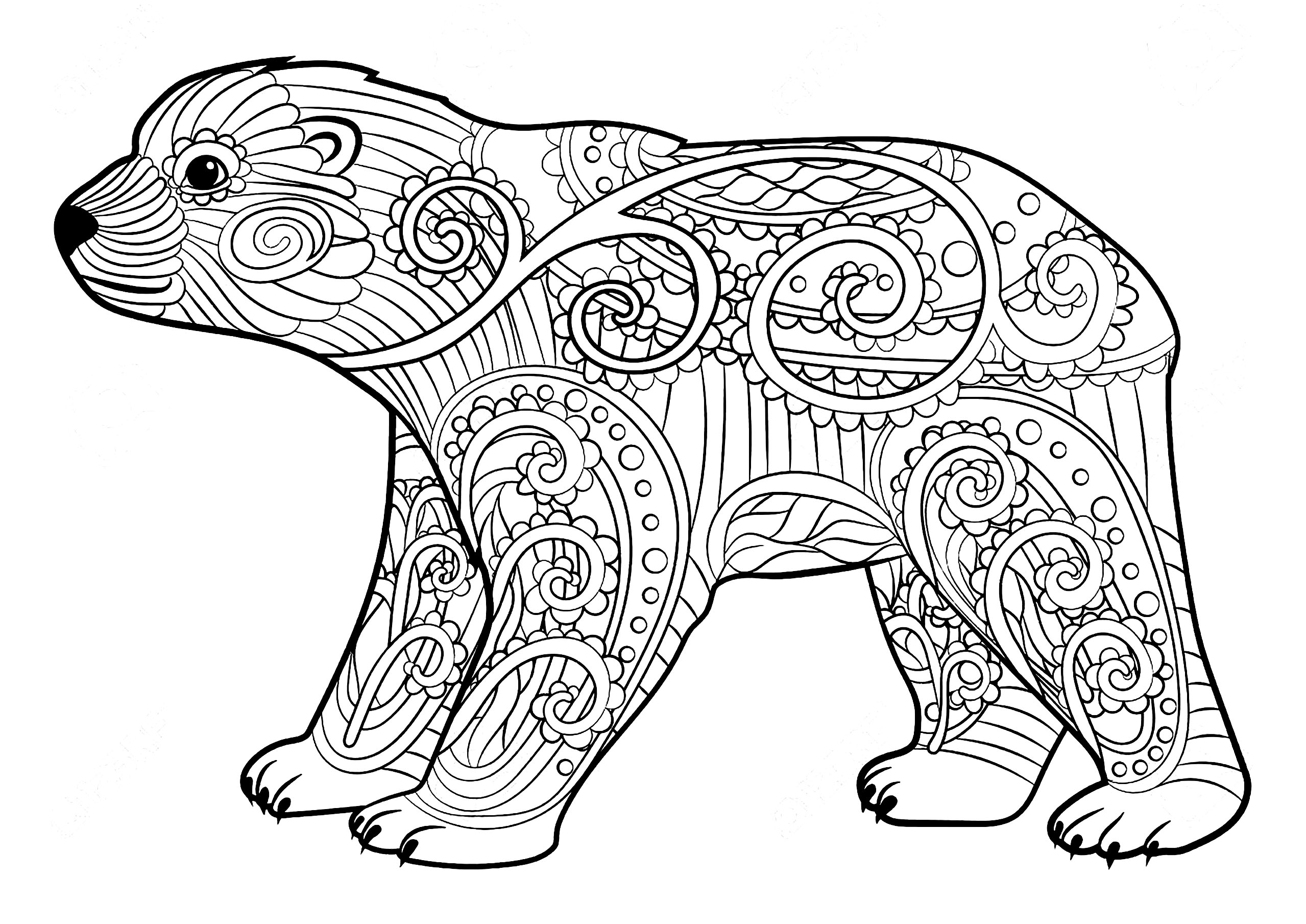 Bears Adult Coloring Pages