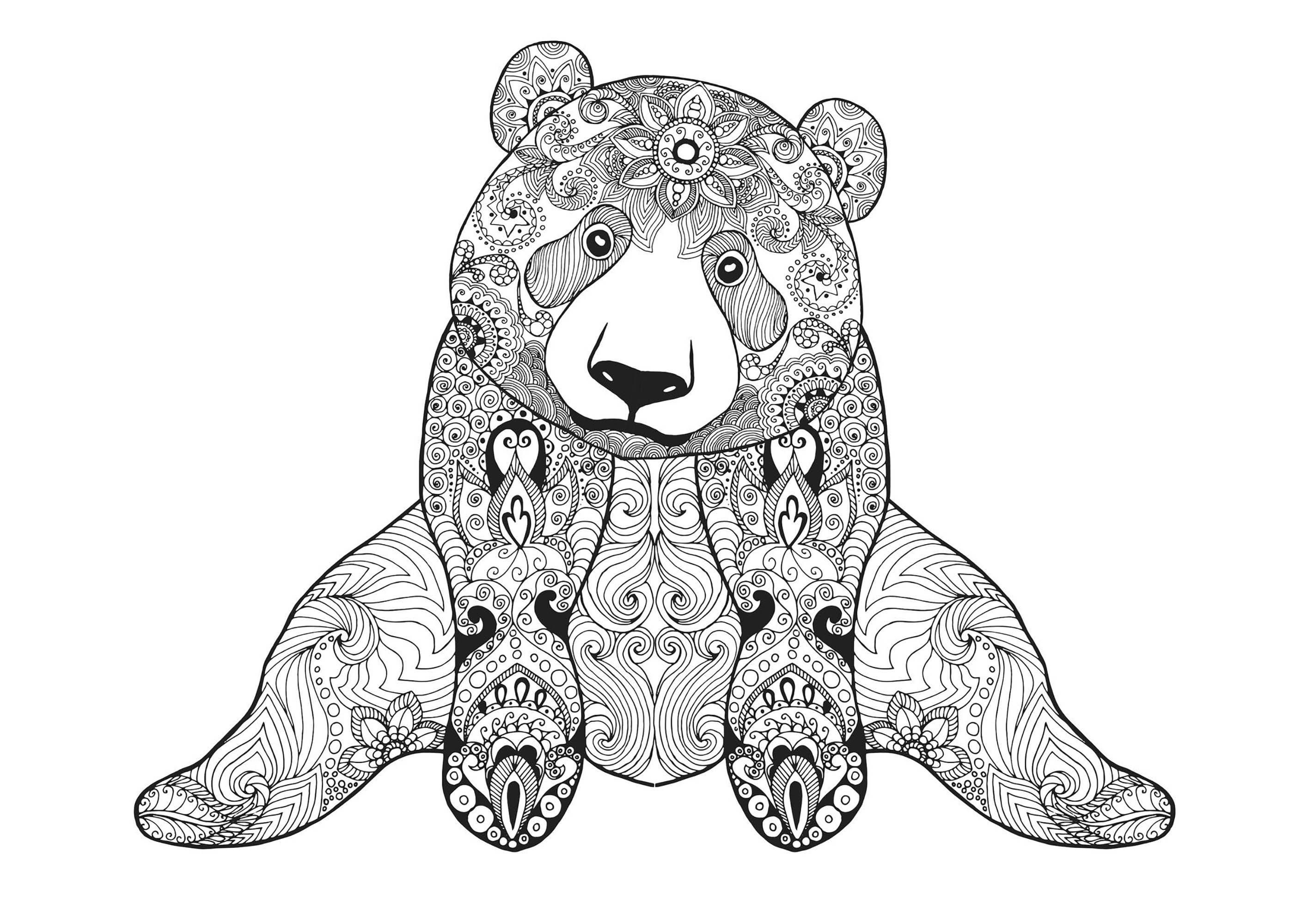 Dirty adult bear pattern harlow