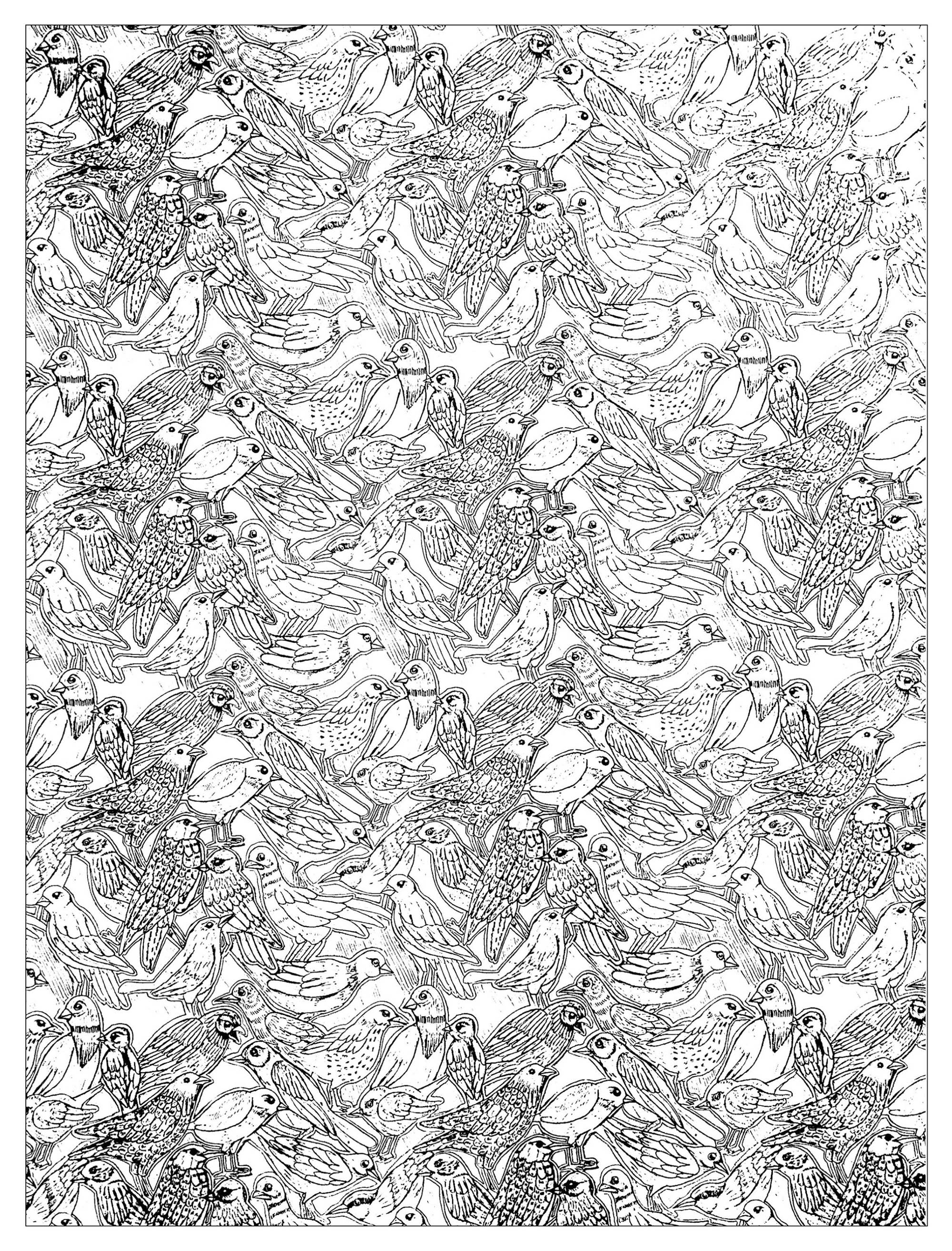 Drawing full of birds to print and color