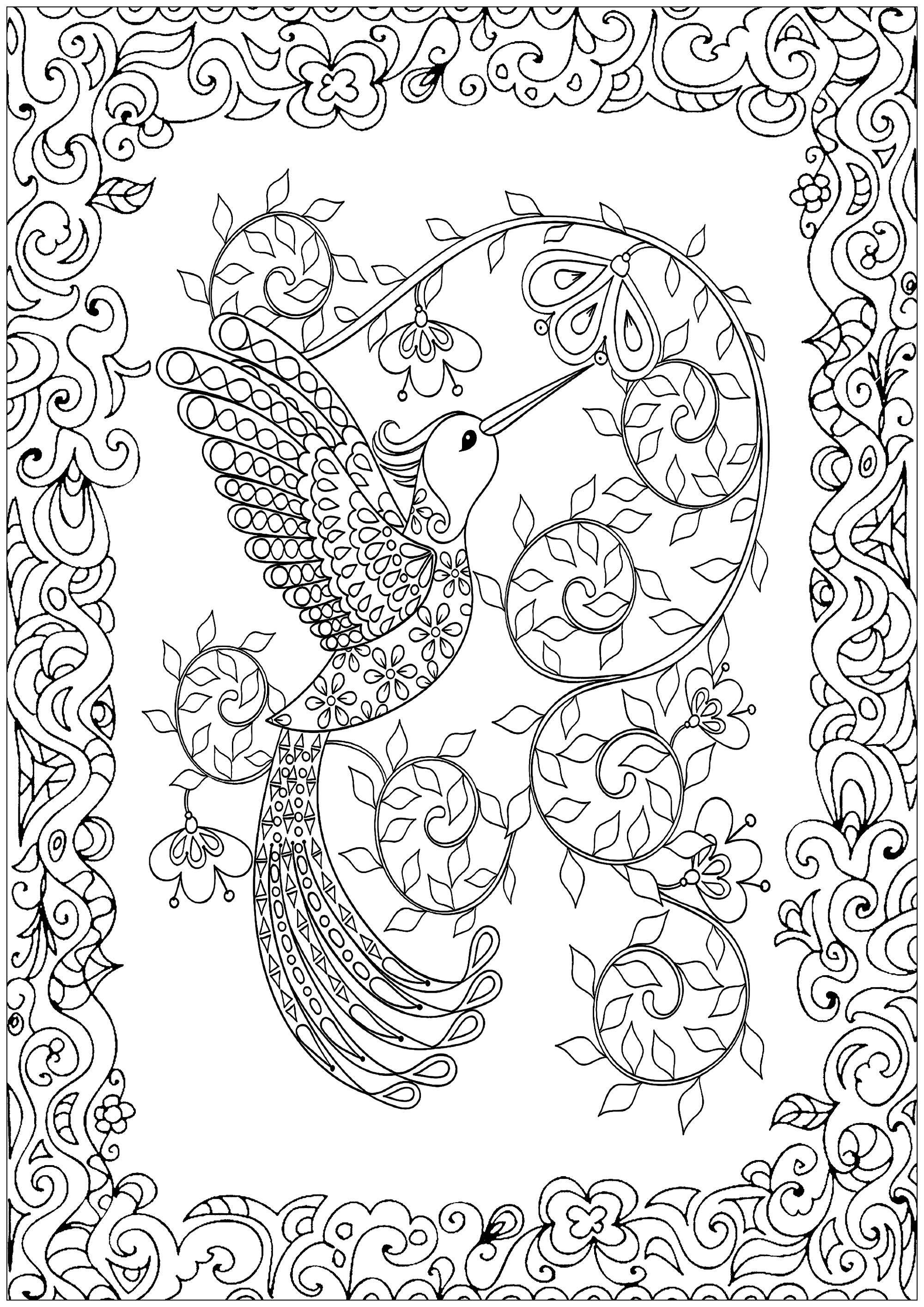 Humming bird, beautiful coloring page with border full of plant motifs to be colored