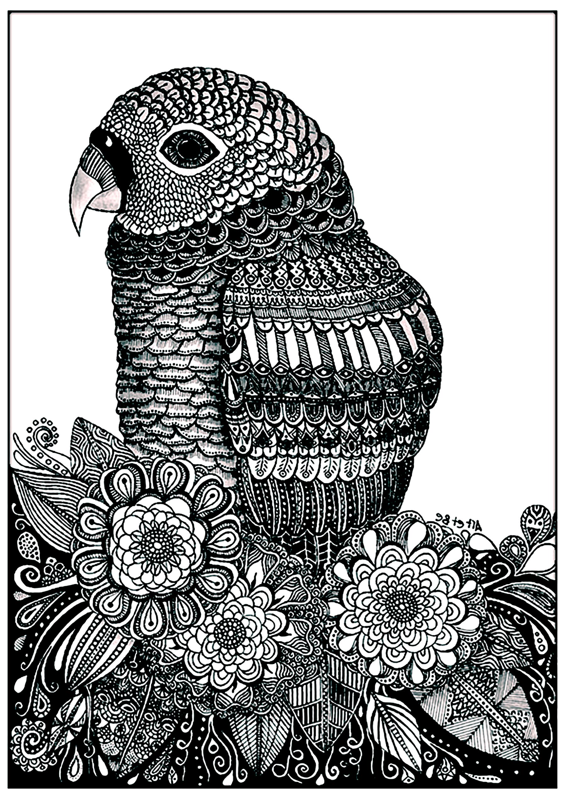 Parrot flowers - Birds Adult Coloring Pages