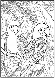 Two parrots and exotic plants